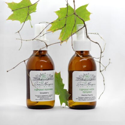Зелена аптека: рецепти трав'яних настоїв та компресів